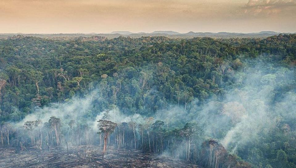 destrucción de las Indias brasileñas