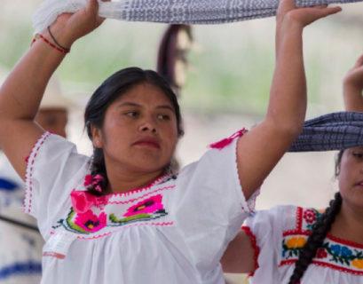Consulta indígena