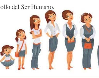 Analogía del Desarrollo humano