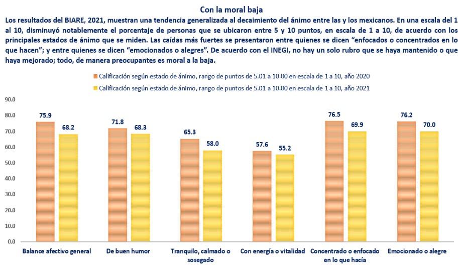Fuente: elaboración propia con base en los tabulados del cuestionario básico del BIARE, 2021, www.inegi.org.mx