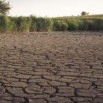 La ignorada crisis del agua