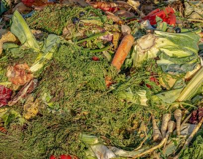 desperdicio masivo de alimentos