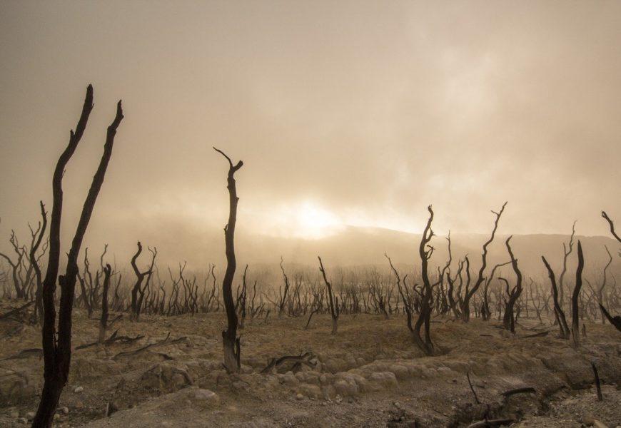 Las alertas sobre el clima